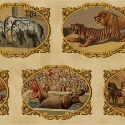 Find tan circus animal applique fabric vintage circus for Warm biscuit bedding company