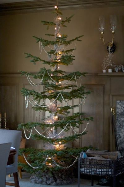The brown room had two amazing silver tip fir trees. These f ...