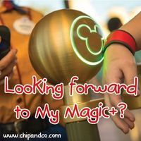 Are you looking forward to My Magic+?