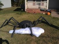 Giant Spider and victim w/ steps DIY using a turtle sandbox