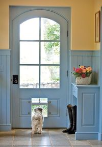 Clever pet door lets this curious pooch keep his own schedule. Photo: Ron Blunt