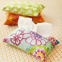 wipe/tissue covers