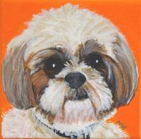 such a cute Shih Tzu Custom Dog Portrait by PopArtPetPortraits on Etsy, $60.00