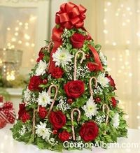 1800 Flowers Holiday Gift Deals!