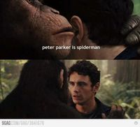 Peter Parker is what?! :D