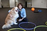 """""""SAR grads aren't limited to working with humans- PT for dogs!"""""""